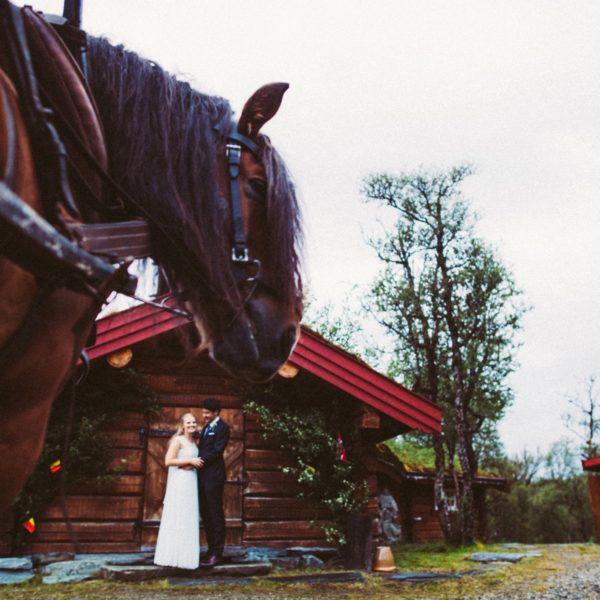 Foto: www.hannelorehaemers.com